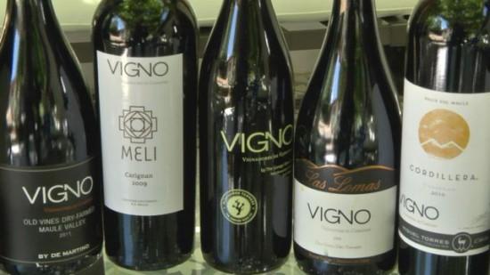 Vigno-Story-9-550x309