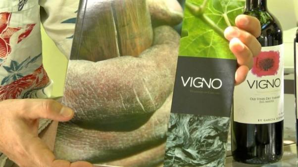Vigno-Story-602x338